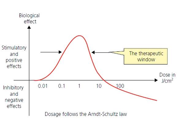 Fot. 11. Krzywa opisująca prawo Arndt-Schulza.